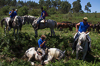 When summertime comes in Galicia (Northwest of Spain), the use of &ldquo;curro&rdquo; begins. A ritual which preserves the free and wild spirit of this region which has remained traditionally tied to nature.<br />