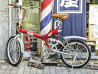 Growing Flat Bike in Ota, Japan 2014.