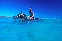 Race Horses been trained in the water to build up their muscles in the Ocean of Cable Beach north western Australia