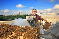 "On the roof of the Grand Palais in Paris, Nicolas Géant opens a hive. ""The honey of the Grand Palais will be sold on the spot. For the moment, there are two hives, and the goal is to have five or six.  I want to systematize this operation with the big companies in a city, in Paris and elsewhere: I am mounting a project with Google in California where half the roofs are equipped with solar panels. My main message is to again put the bees as close as possible to Man, like they have always been.""."