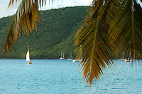 Maho Bay with sailboat.<br /> Virgin Islands National Park.<br /> St. John, U.S. Virgin Islands