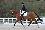 Class 8. Elementary 49. Unaffiliated dressage. Brook Farm Training Centre. Essex. 19/03/2017. MANDATORY Credit Garry Bowden/Sportinpictures - NO UNAUTHORISED USE - 07837 394578