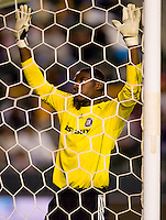 Goalkeeper Sean Johnson of the Chicago Fire looks through the net of his office. The Chicago Fire defeated CD Chivas USA 3-1 at Home Depot Center stadium in Carson, California on Saturday October 23, 2010.