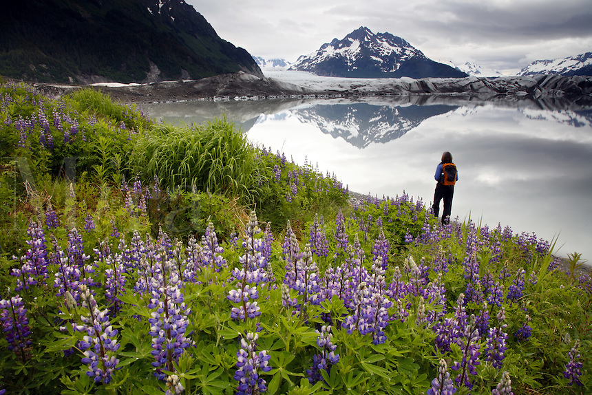 Hiking to Sheridan Glacier, Cordova, Chugach National Forest, Alaska.