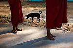 BURMA-10399NF2, Myanmar, Burma, 02/2011