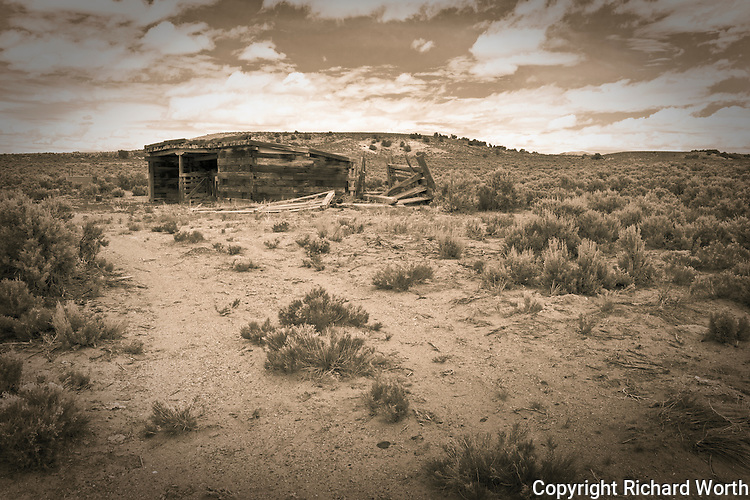 Rendered in toned black and white, a shed built of railroad ties stands at the end of a barely discernible trail, tracks left by wheels - truck, car, maybe horse drawn wagon.  Cobre, Nevada.