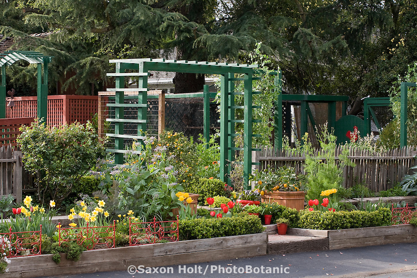 Entry from street through painted arbor into Rosalind Creasy front yard garden