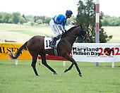 Fair Hill Races - 05/25/2013