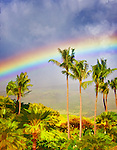 Hawaii 2014 - My Favorite Views