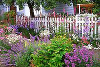 Color explosion of flowers in garden in NE Portland, Oregon