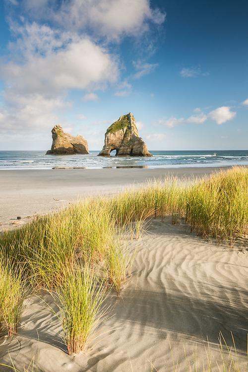 Early Morning Wharariki Beach, Golden Bay, New Zealand - stock photo, canvas, fine art print
