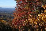 Autumn in North Carolina