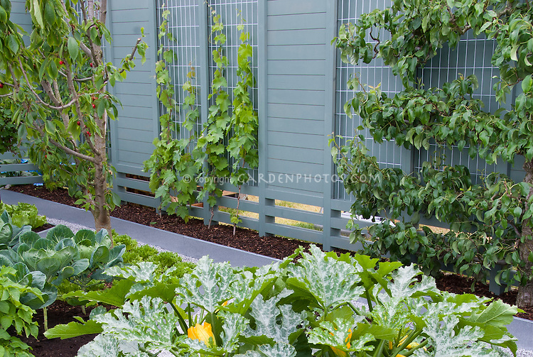 Landscaping with fruit trees plant flower stock - Fruit trees in small spaces decoration ...