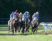10/26/2013 - Aiken Fall Races