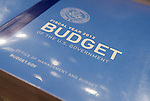 The Budget-2011