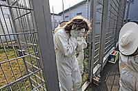 France. Penitentiary of Le Havre. At the end of the beekeeping activity, the youths are brought back to the cells. They hide their faces so as not to be photographed.///France. Centre Pénitancier du Havre. A la fin de l'activité apicole, les jeunes sont ramenés en cellule. Ils cachent leur visage pour ne pas être photographiés