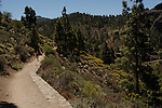 Walking through the countryside of Gran Canaria, Canary Islands, Spain.