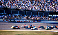 2000 Winston 500, Talladega, October