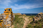 "The ""Heavenly Gate"" on Great Saltee, the larger of the Saltee Islands, off the coast of Co. Wexford, Ireland. © 2011 Dave Walsh"