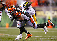 Vontaze Burfict #55 of the Cincinnati Bengals intercepts a pass in front of Markus Wheaton #11 of the Pittsburgh Steelers in the fourth quarter during the Wild Card playoff game at Paul Brown Stadium on January 9, 2016 in Cincinnati, Ohio. (Photo by Jared Wickerham/DKPittsburghSports)