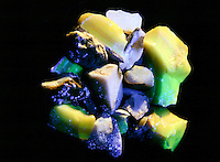 FLUORESCENCE OF OPAL UNDER UV LIGHT AND TUNGSTEN (1 of 2)<br /> Photoluminescence of a Non-Crystalline Silicate<br /> Opal specimens shown under a mix of full spectrum UV and Tungsten light.