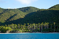 Cinnamon Bay St. John<br />