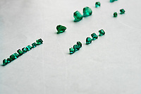 Fine emeralds seen after being processed in a cutting and polishing workshop in Bogota, Colombia, 31 March 2006. Approximately 60 percent of the world's total amount of emeralds come from Colombia. Most of the rough gems are processed in workshops located in the emerald district in downtown Bogota. Due to their special clarity and deep vivid green color, Colombian gemstones are considered the most beautiful emeralds in the world.