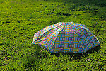 USA, Massachusetts, Boston. Abandoned umbrella at Boston Commons in springtime.