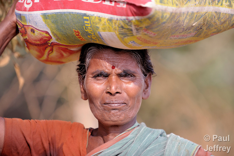 A woman in Poonthandalam, a village in the southern India state of Tamil Nadu.