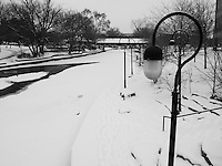Frozen River Downtown Naperville's Riverwalk Park sits silently under a blanket of snow in the depths of winter