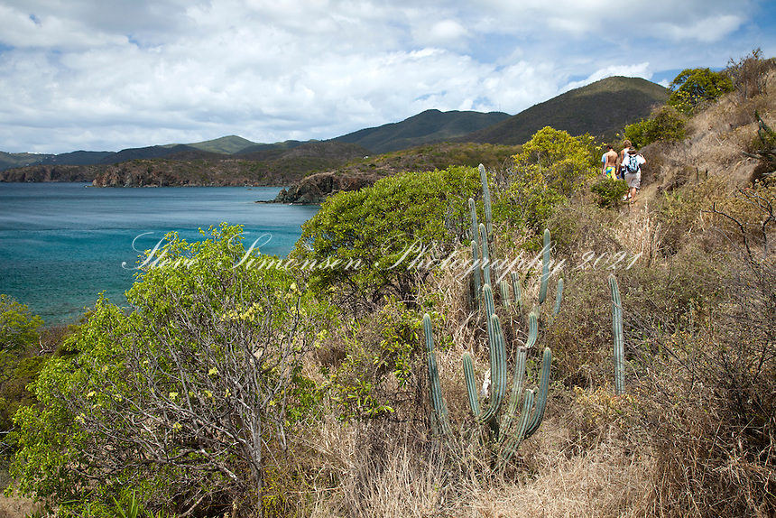 Ram Head Trail<br /> past Salt Pond Bay<br /> St. John<br /> U.S. Virgin Islands