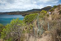 Ram Head Trail<br /> past Salt Pond Bay<br /> St. John<br /> U.S. Virgin Islands