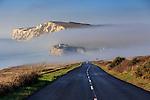 2016-12-30 - Freshwater Fog