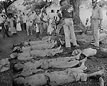 May 1942 - Bodies of prisoners who died during the Bataan Death March lie on the ground.