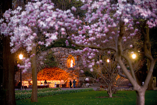 Grotto in spring.<br />