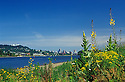 Downtown Portland skyline and Willamette River from Sellwood Riverfront Park; Oregon.