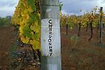 Chardonnay sign on vineyard in New Zealand