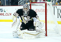 Marc-Andre Fleury #29 of the Pittsburgh Penguins in action against the Los Angeles Kings during the game at Consol Energy Center in Pittsburgh, Pennsylvania on December 11, 2015. (Photo by Jared Wickerham / DKPS)