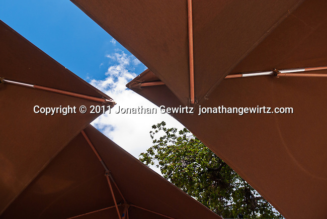 View up towards the sky of umbrellas covering tables in an outdoor cafe.