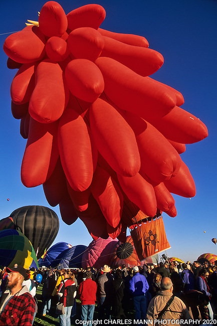 A balloon resembling a giant red chile ristra launches in the morning light at the Albuquerque International Hot Air Balloon Fiesta