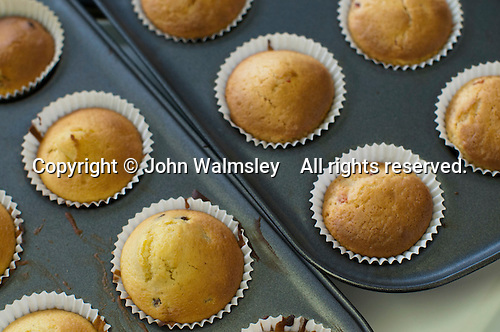 Freshly baked cupcakes, Food Technology class, state secondary School.