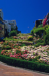 "Lombard Street ""the crookedist street in the world""  with an assortment of flowers lining the winding street San Francisco California USA"