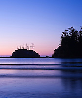 Sunset Cove, Shore Acres state park, Oregon