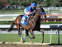 February 5, 2011.Game On Dude, ridden by Chantal Sutherland,leading in the stretch and winning the San Antonio Stakes at Santa Anita Park, Arcadia, CA