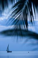Afrique/Afrique de l'Est/Tanzanie/Zanzibar/Ile Unguja/ Stone Town: un boutre bateau de pécheurs devant la plage du Restaurant Mitoni Marine