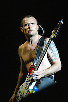 The Red Hot Chili Peppers Perform at the LA Forum