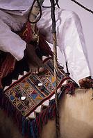 In-Gall, near Agadez, Niger - Tuareg Camel Decorations