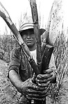 Índio guarani Kaiowá canavieiro, vítima de trabalho análogo a escravo, na usina de cana de açúcar, Naviraí, localizada no município de Naviraí - Mato Grosso do Sul, MS..Indian Guarani sugar cane Kaiowá, work victim similar to slave, in the plant of cane of sugar, Naviraí, located in the municipal district of Naviraí - Mato Grosso do Sul, MS..Índio guarani Kaiowá canavieiro, vítima de trabalho análogo a escravo, na usina de cana de açúcar, Naviraí, localizada no município de Naviraí - Mato Grosso do Sul, MS..Indian Guarani sugar cane Kaiowá, work victim similar to slave, in the plant of cane of sugar, Naviraí, located in the municipal district of Naviraí - Mato Grosso do Sul, MS.
