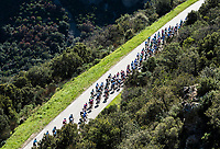 Picture by Alex Broadway/SWpix.com - 10/03/17 - Cycling - 2017 Paris Nice - Stage Six - Aubagne to Fayence - The peloton rides through the French countryside.