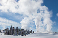 Fountain geyser erupting in the Lower Geyser Basin during winter